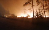 Лесные пожары в Челябинской области